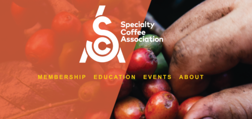 SCA - Specialty Coffee Association